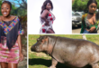 You Hippo, I Don't Know You From Anywhere & We've Never Met Face To Face So Don't Get Involved–Efia Odo Slams Sista Afia